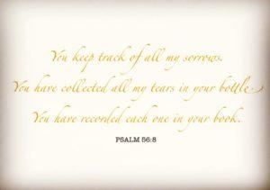 psalm 56:8